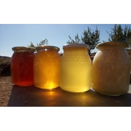 Miel de Cosechero